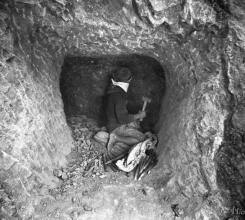 Grave digging 15626251361[H]