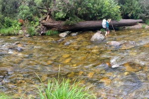 the leech-filled river crossing