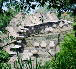 Bena Village 14016569087[H]