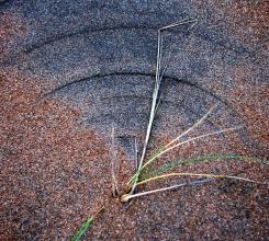 Australia - DSC_4014_2 Crop Circles 3925179699[H]