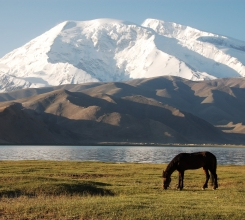 China - Horse on Karakul Lake 2720735297[H]