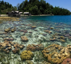 Indonesia - Togean Islands circumnavigation adventure 15463798431[H]