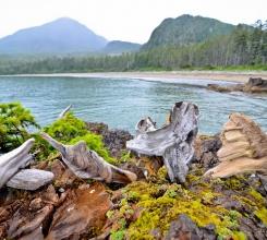 Canada - Wild wild west coast 9754358691[H]