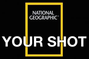 NationalGeographic Yourshot