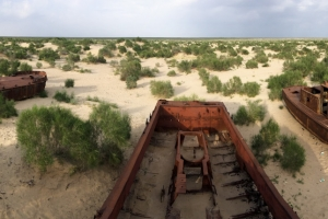 The rusted memories of the Aral Sea: Fishing boats, dragged here to die together.