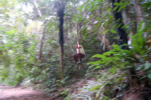 Myke swinging Tarzan in the Amazon
