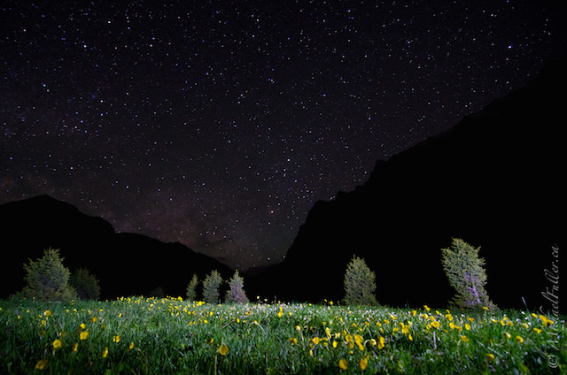 night starscape in Kyrgyzstan mountains