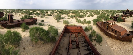 Aral Sea fishing boats, dragged here to die together.