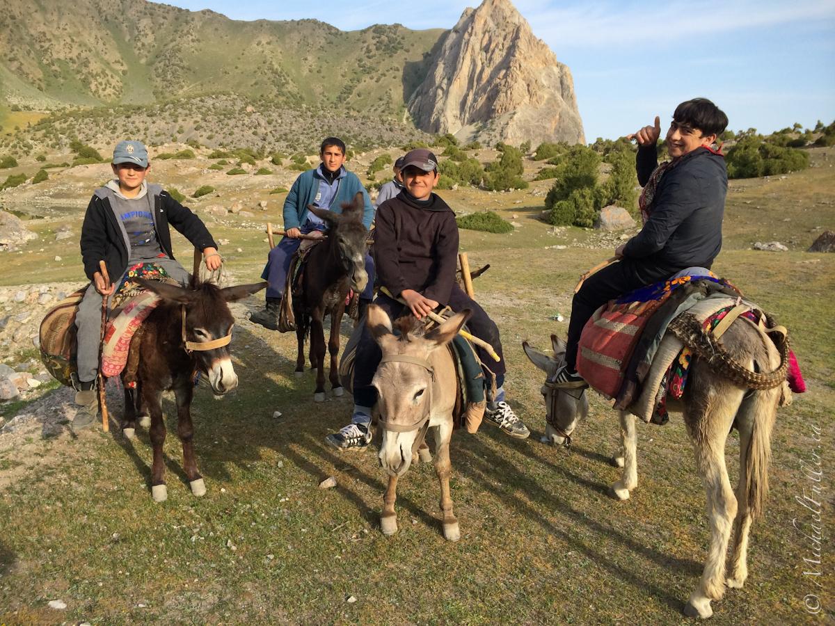Donkey Kids 2