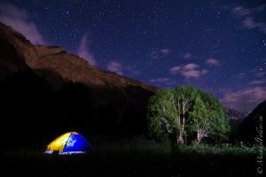 Pamir Alpine Tentscape