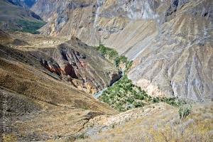 Colca Canyon Morning 217990934[H]