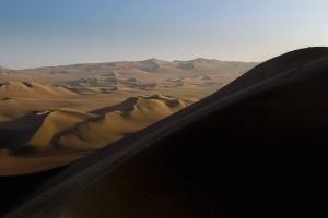 Dune 241300239[H]