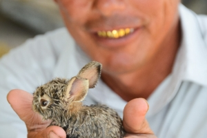 After climbing a derelict cemetery TV-tower this man appeared holding a bunny