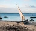 Dhows in Zanzibar