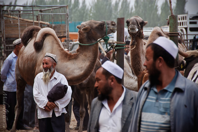 Uighur men in Xinjiang, China