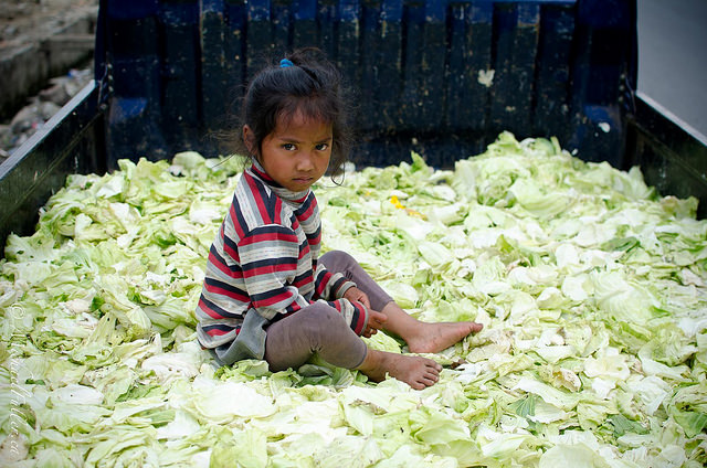 """""""Cabbage Patch Kid"""". Central Sumatra is overflowing with cabbage."""